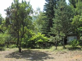 property in bulgaria for sale